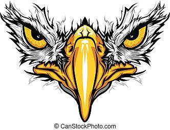 águila, ojos, vector, ilustración, pico