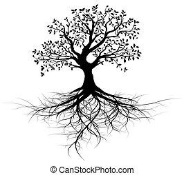 árbol, vector, entero, raíces, negro