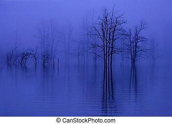 Árboles en niebla