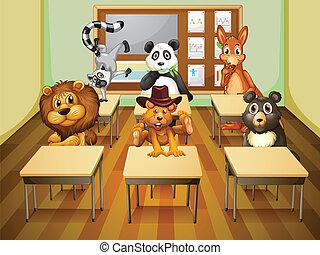 Aimals en clase