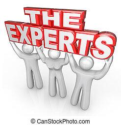 ayuda, gente, expertos, solucionar, profesional, problema