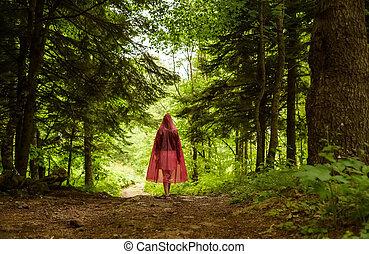 Bosque encantado y camino