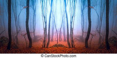 Bosque sombrío