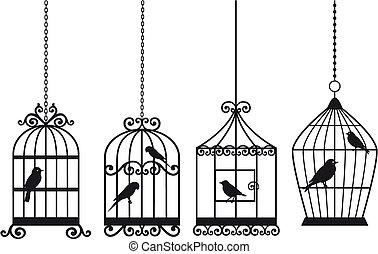 Cápsulas de aves llenas