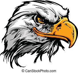 Cabeza grafica de un águila calva, ilustración de vector vector
