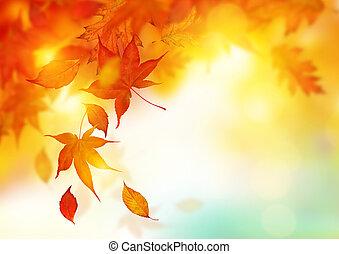 Caen hojas de otoño