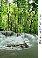 Caja de agua de Tailandia