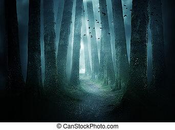 Camino a través de un bosque oscuro