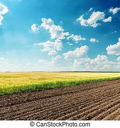 Campos de agricultura bajo el cielo azul oscuro