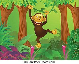 Chimpancé en la jungla