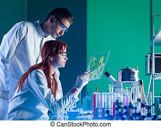 Científicos farmacéuticos estudiando una muestra