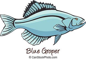 color, grouper, ilustración