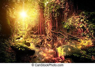 Colores surrealistas del bosque tropical de fantasía