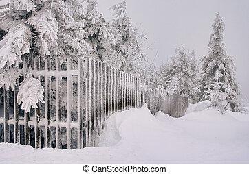Comienza en el invierno 01