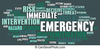 Concepto de emergencia