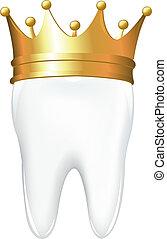 corona, diente