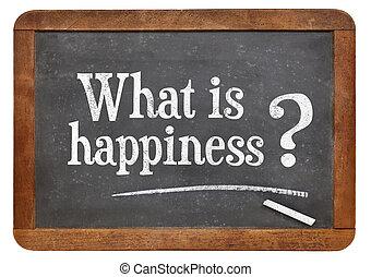¿Cuál es la pregunta de la felicidad