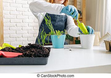 cuidado, dentro, plantas, jardinero, hembra, ella