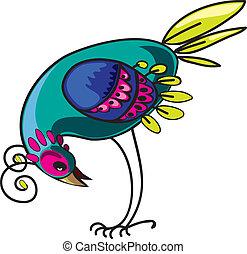 curioso, pájaro