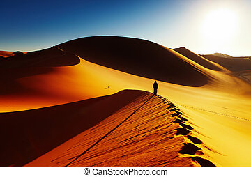 Desert del Sahara, Argelia