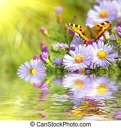 Dos mariposas sobre flores con reflejo
