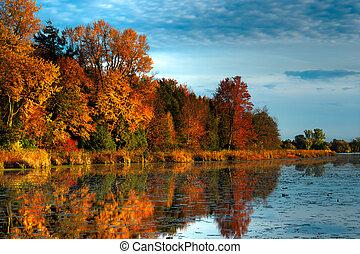 El bosque de otoño de HDR en el muelle