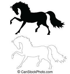 El caballo negro en movimiento