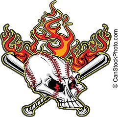 El cráneo de béisbol y los murciélagos