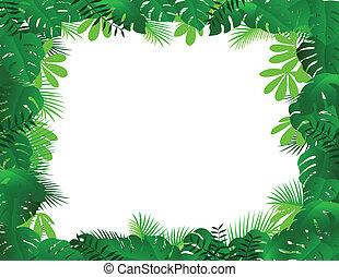 El marco del bosque