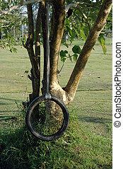 El swing de los neumáticos depende de un árbol