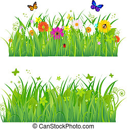 flores, pasto o césped, insectos, verde