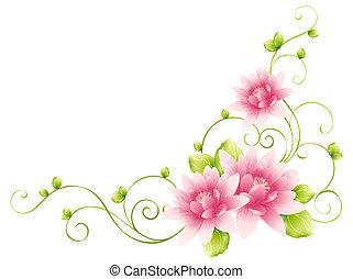 Flores y viñas