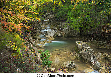 Flujo de otoño.