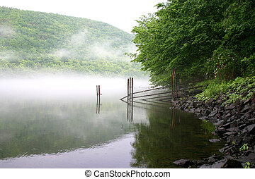 Fog sobre el río