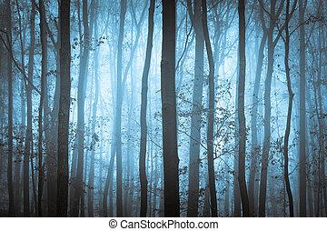 Forrera azul oscuro y espeluznante con árboles en la niebla