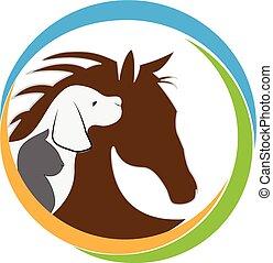 Gato de perro y logo de caballo