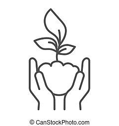 graphics., cuidado, naturaleza, concepto, plano de fondo, símbolo, brote, concepto, estilo, joven, icono, línea blanca, asimiento, vector, contorno, humano, delgado, excepto, planta, móvil, palmas, icono, web., manos