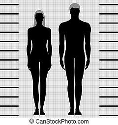 hembra, macho, plantillas, cuerpo