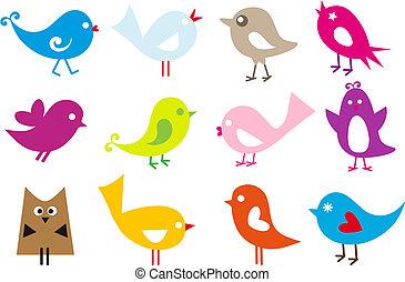 Hermosos pájaros