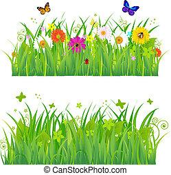 Hierba verde con flores e insectos