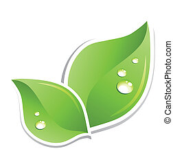 Hoja verde con gotitas de agua. Vector
