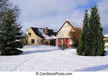 Jardín en el invierno 01