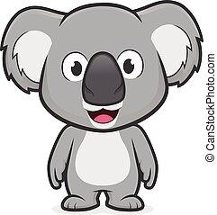 koala, posición