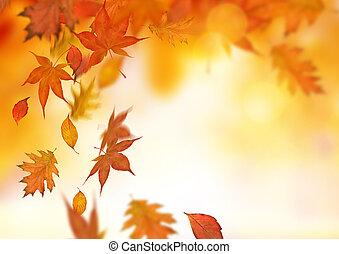La caída del otoño deja el fondo