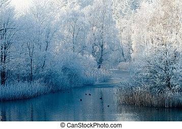 La escena del paisaje de invierno