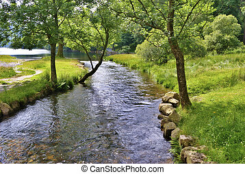 La escena pacífica del río