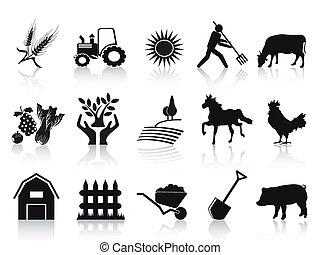 La granja negra y los iconos de la agricultura