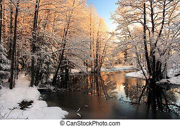La luz del sol del río de invierno