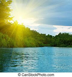 Lago en el bosque profundo