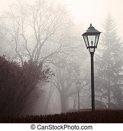 Lampara de la calle y parque forestal en la niebla
